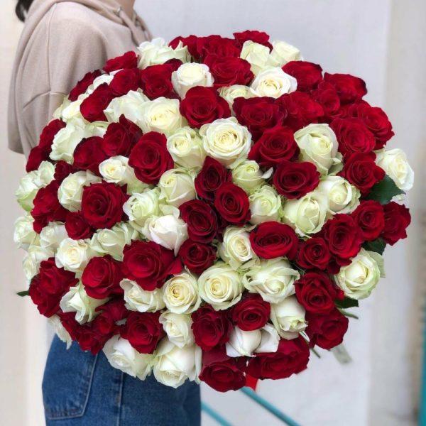 Купить 101 розу в Краснодаре